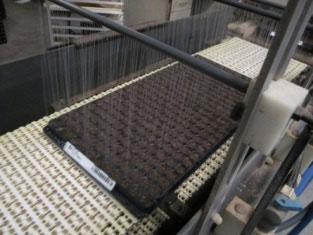 Fill propagation trays